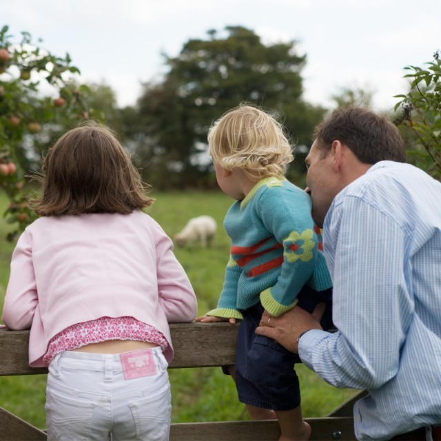 Family looking at a sheep on a Wiltshire countryside walk